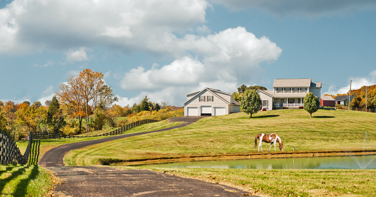 Real Estate Agent Specializes in Horse Farms