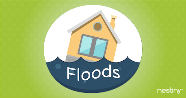 Preparing Your Home for Extreme Weather: Floods