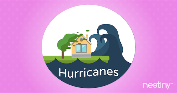 Preparing Your Home for Extreme Weather: Hurricanes
